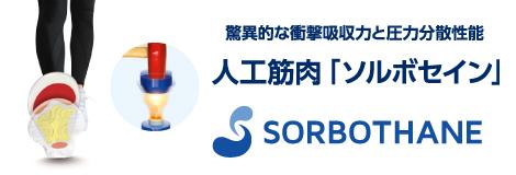 sorbo_image.jpg